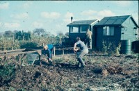 0002210_FourCorners_Photograph_WilfThust_HarryThorpe_ResearchOnAllotmentsInBirminghamSetupByProfessorThorpe_1975_Photo14.jpg